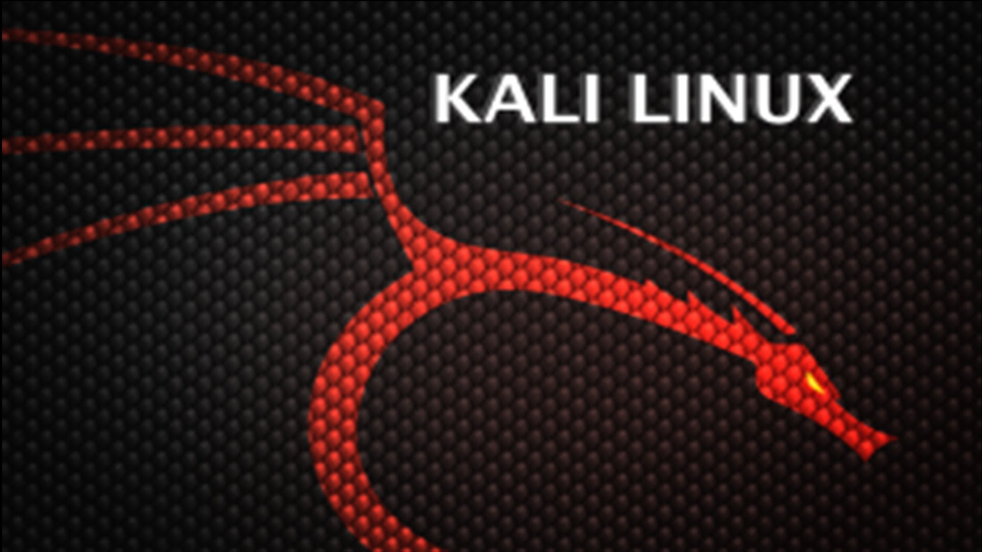 Software-update: Kali Linux 2.0 - Linux Magazine
